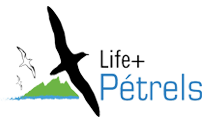 Life+ Petrels