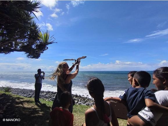 Que pensent les Réunionnais de nos actions de conservation des pétrels?